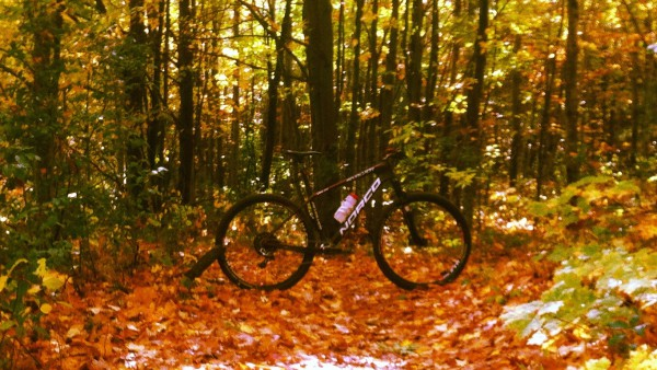 HOW TO LOVE FALL RIDING